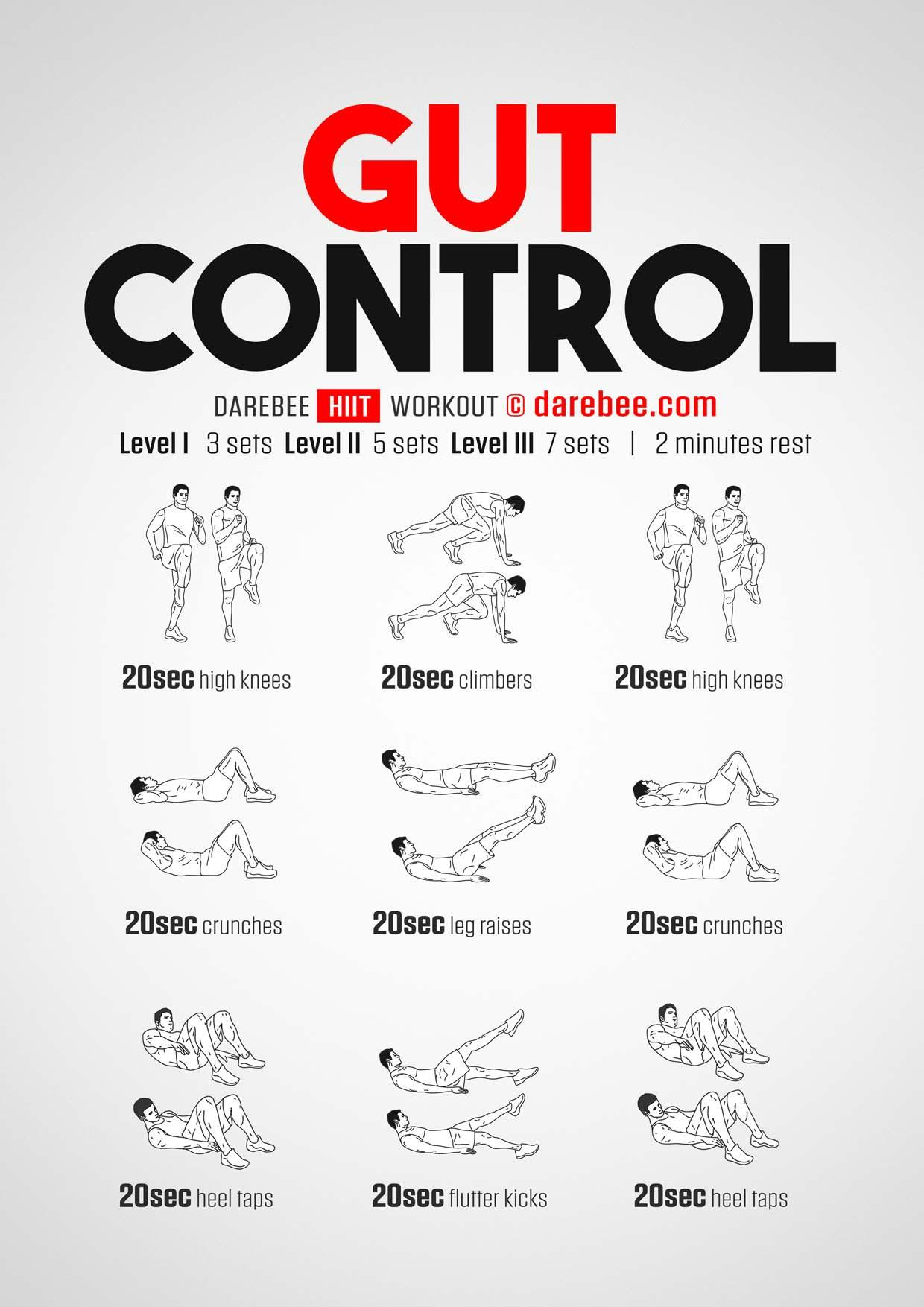 gut-control-workout-page-001 (1)